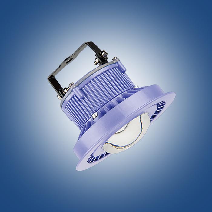 LED隔爆灯(吸顶灯)