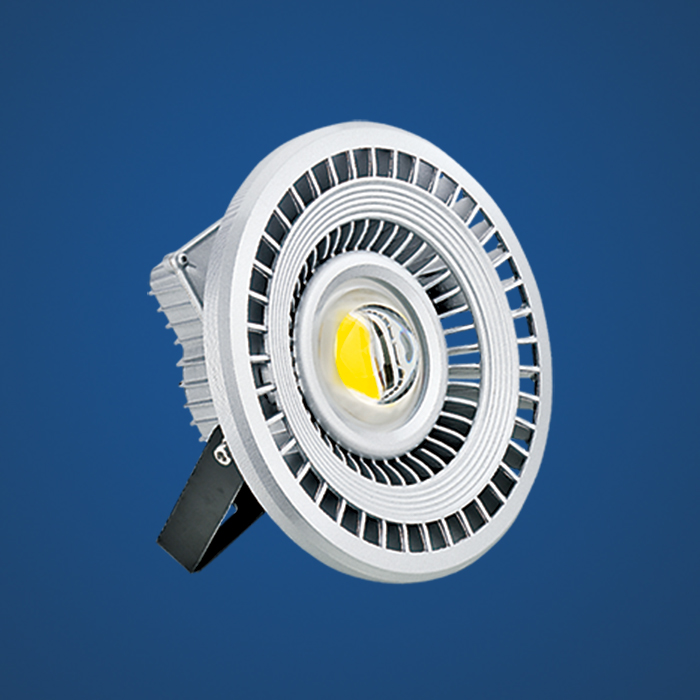 LED flood light   MT01